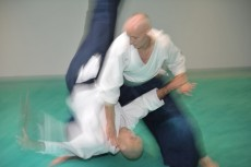 Aikido-Workshop